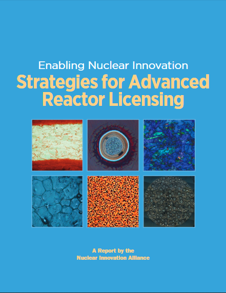 Strategies for Advanced Reactor Licensing